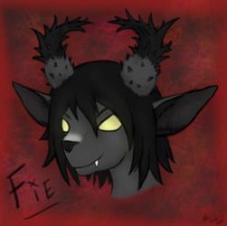 Fie Headshot