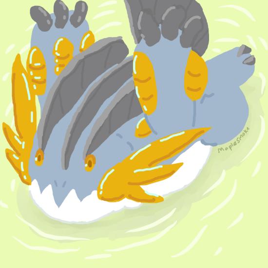 Mega Swampert use Splash
