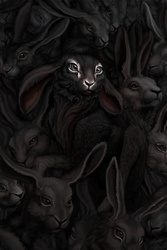 A real rabbit has no name.