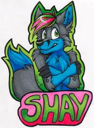 Shay Badge (FWA 2015)