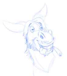 Stoner donkey