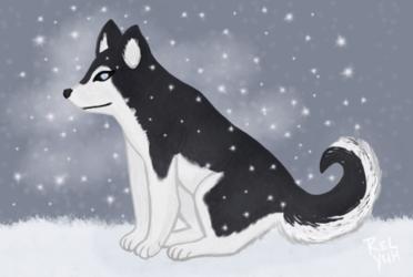 Saxon w/ snow bg