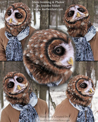 Metis - Northern Spotted Owl Mask