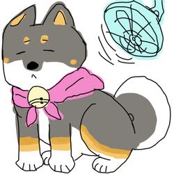 Shiba scribble