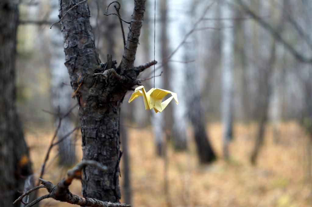 Little Dragons - Yellow