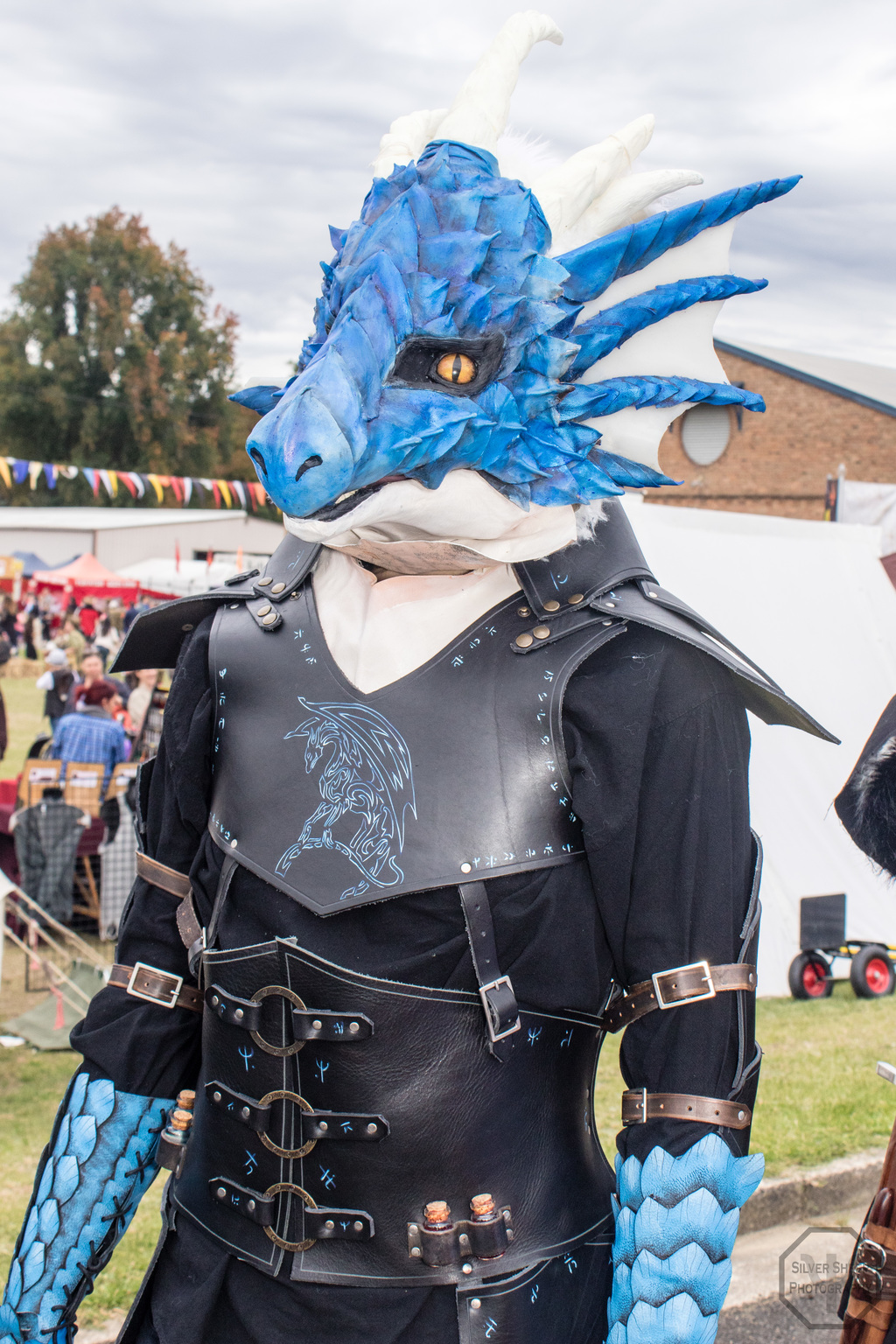 Most recent image: Ironfest 2017: Draggo 2
