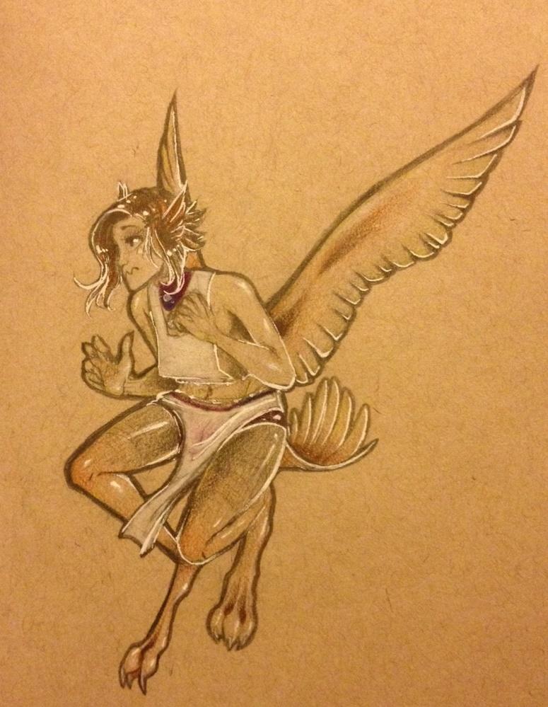 harpy & sketches