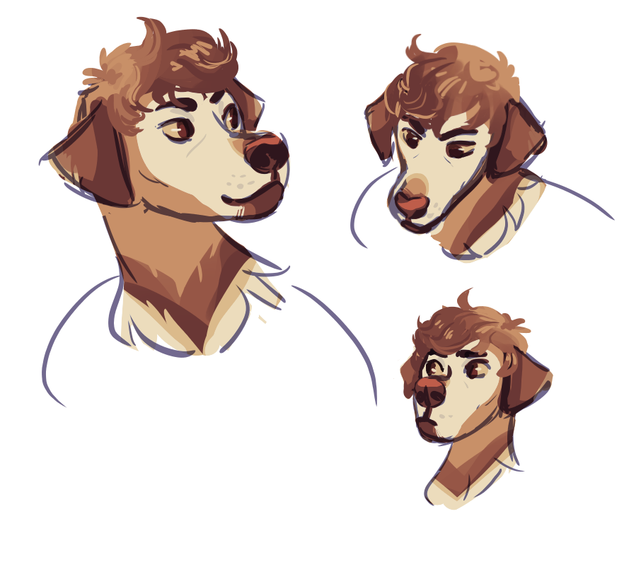 curly doge