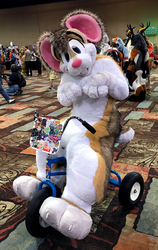 Siber Tricycle Hamster (BLFC18)