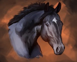 Horse speedpaint