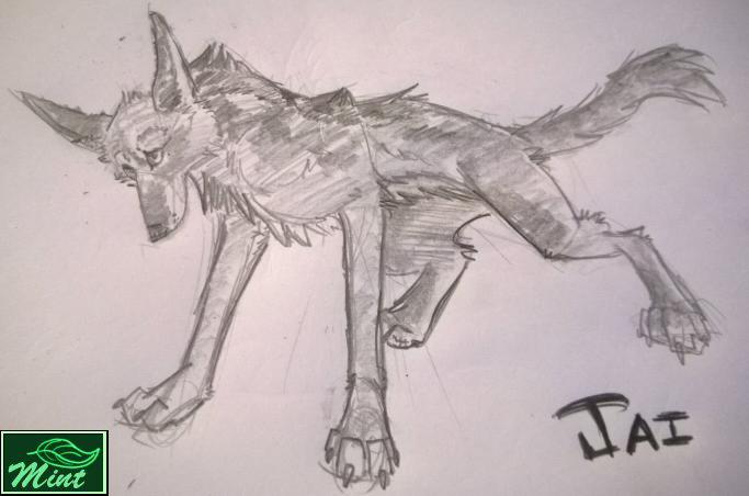 (Gift Art) 10 minute jackal