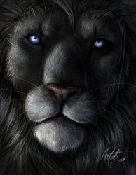 The majestik one