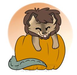Pumpkin Hugger 529