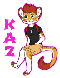 Kaz Badge