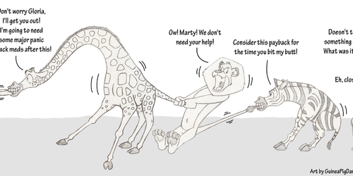 Madagascar tug of war