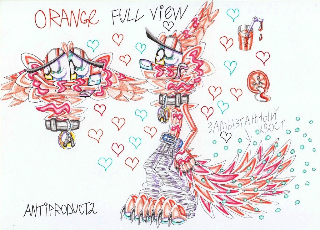 Orange-full view