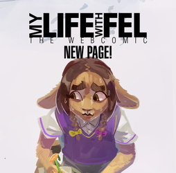 My life with Fel update