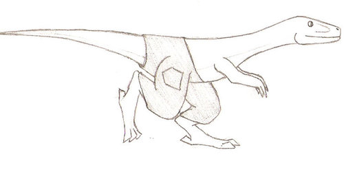 Raptor in Pants