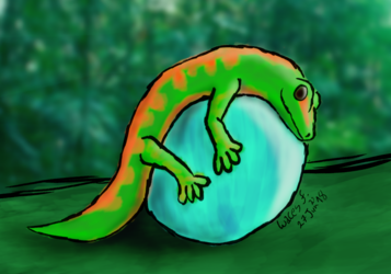 Gecko is loving his ball