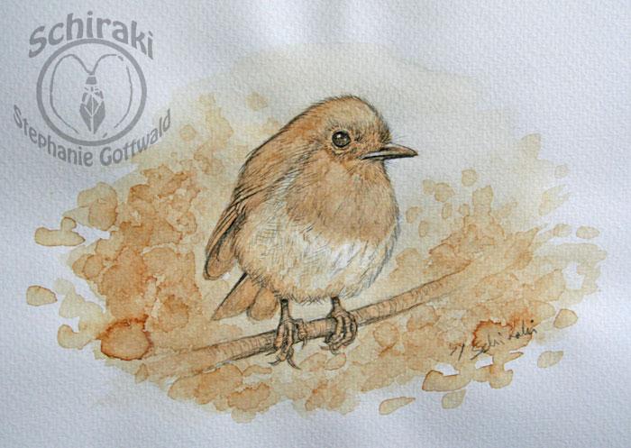 robin with coffee
