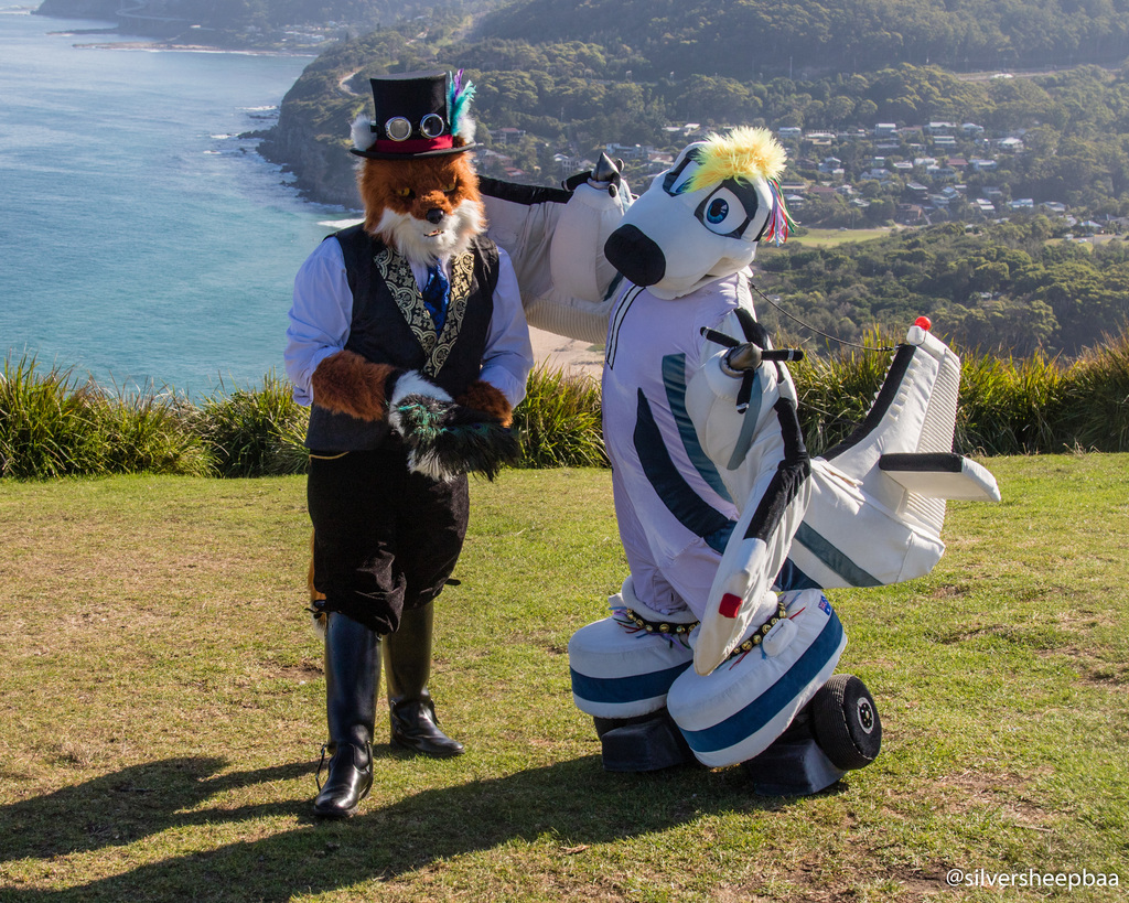 Bald Hill: A Fox and A Plane