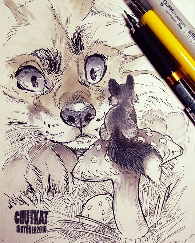 Featured image: Little Fox