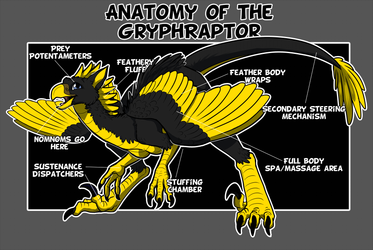 Anatomy of the GryphRaptor