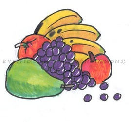 fruit still life sketch