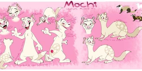 Mochi Ferret Reference