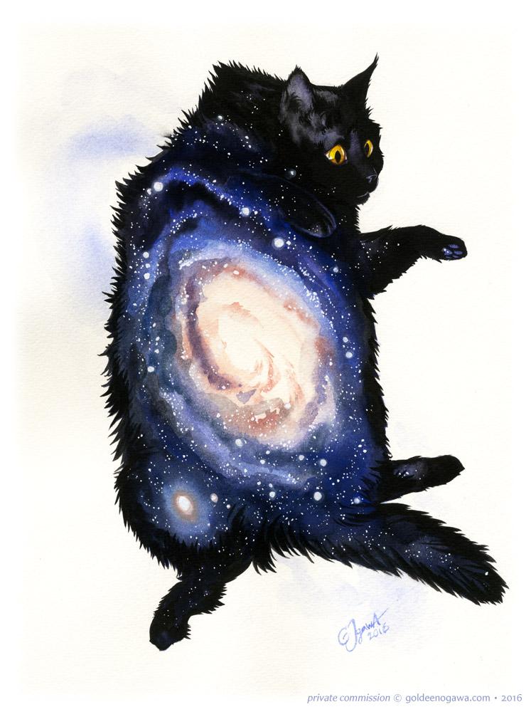 Galaxy Cat - ANDROMEDA