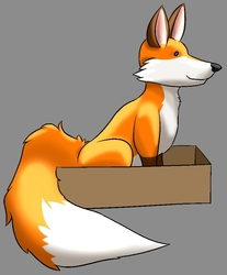 Fox in another Box