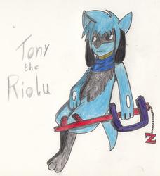 Tony the Riolu (Birthday Gift)