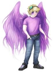 fluxy wings
