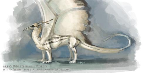 Northern Gannet Dragon