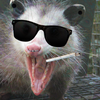 Avatar for opossum