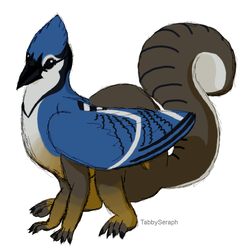 Bird-squirrel Taur