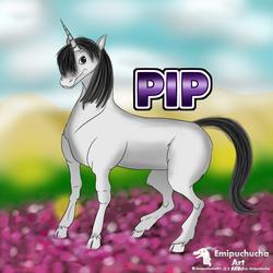 Pip's badge