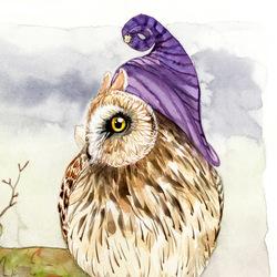 Strange Short Eared Owl