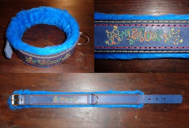 Collar for Piox