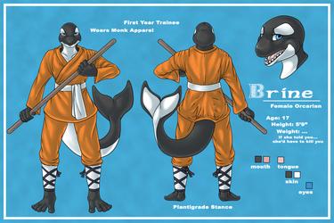 Brine Reference Sheet.