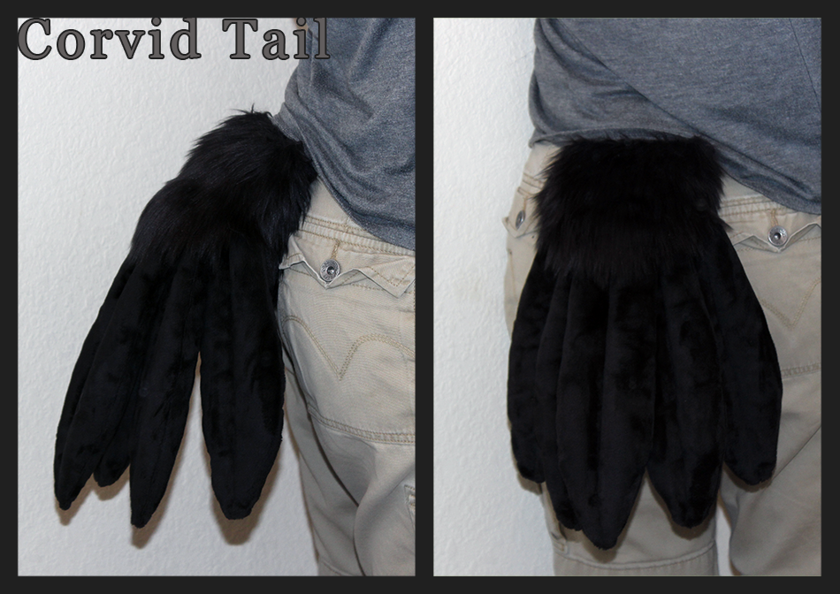 Corvid Tail!