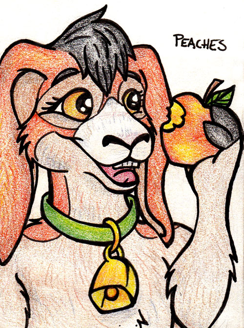Peaches Doodle for doodle exchange!