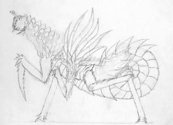Phyragacus Comantia (Request)