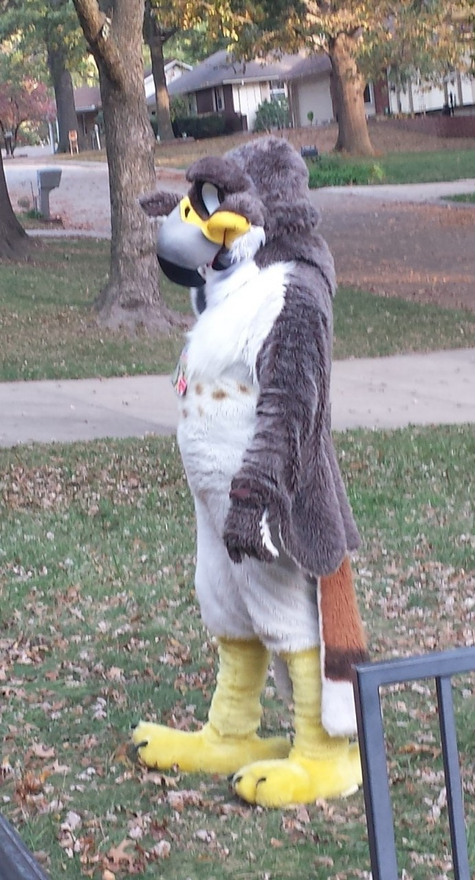 Most recent image: Victor Redtail With New MoreFurLess Head Front View