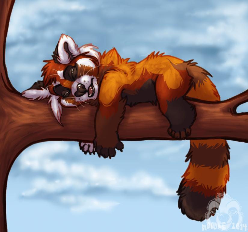 Sleepy Panda Squish