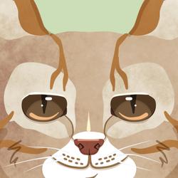 Icon: Kitty