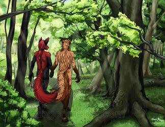 A Woodland Stroll