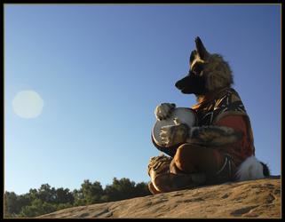 Kahini Wild Dog on a Pilgrimage 3 of 4
