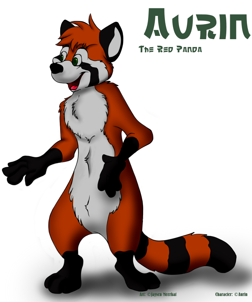 Aurin the red Panda