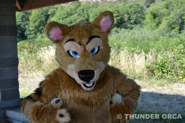 RainFurrest BBQ 2016 (Part 27)